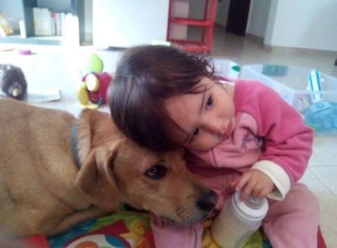 ילדים וכלבים 2